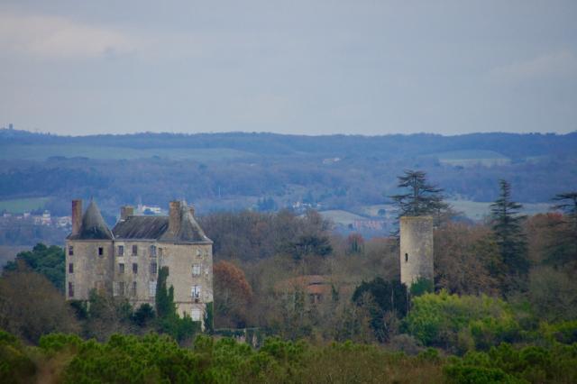 Le château de Buzet au milieu de la végétation